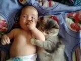Sevimli kedi, komik ve sevimli kediler ve bebekler koleksiyonundan bebek seviyor