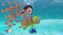 Niloya - Şarkı / Balıklar Şekil Şekil - Yumurcak Tv