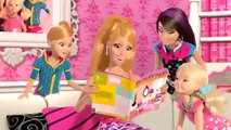 Barbie Life In The Dreamhouse France Ca colle !