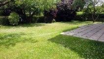 For Sale - House - Laken (1020) - 204m²