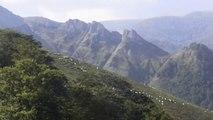 Au sommet des montagnes en Pays Basque  2015