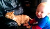 Bebe Pelea Con El Gato, Peligroso No-- ★ Bebe Divertido Bebe Chistoso Bebe Risa Bebe Tierno Bebe