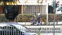 Narcotraffico albanesi-'ndrangheta: Finanza Lecco fa 24 arresti