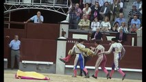 Bullfighter Jimenez Fortes is gored in the NECK during bullfight in Madrid