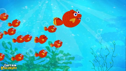 12345 Once I caught a Fish alive - Nursery Rhyme