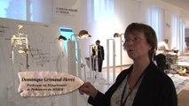 Au musée de l'homme, Dominique Grimaud-Hervé évoque l'émergence de la lignée humaine