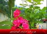 BAGH azad kashmir KHODA sy mannat ha, Made in Kashmir-Kail Valley-Neelam Valley-Rawalakot-Kotli