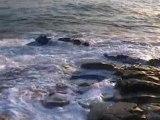 Erdeven, Bretagne - Cure d'océan 2