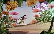 La Fourmi et la Cigale Dessin animé Film Complet en Français dessin animé walt disney