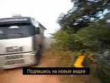 road accidents - car accidents - fails,funny clips,funny animals
