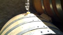 Le glou glou de la fermentation