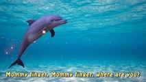 Sea Animal Finger Family Nursery Rhyme   Whale Orca Killer Whale dolphin octopus Daddy Fin