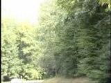VW Golf GTI Rally car Crashes