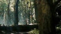 Into the Wild (2007) Full Movie on Description