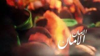 Mir Hasan Mir 2016 Noha Complete Album
