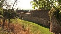 Le Patrimoine Bâti de la Commune de Wangen (Alsace)