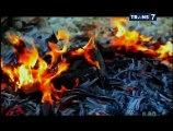 Bocah Petualang  - Tator negri Tongkonan