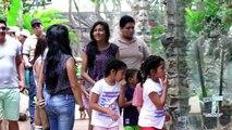 Aprende y diviértete en El Pantanal y Parque Lago