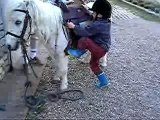 Ulysse qui monte sur Tintin tout seul