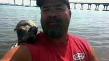 Un phoque grimpe sur un bateau et fait ami-ami avec le marin! Trop chou