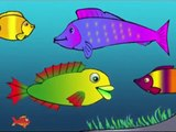 Meet Ploop The Baby Fish! Educational Cartoons for Kids & Children /childrens phim hoạt hì