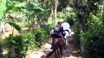 El Limon Waterfall, Samana, Dominican Republic   WestJet Vacations