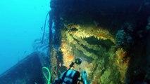 Plongée sur l'avant duGrec - Cyana Plongée Hyeres