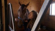 Pet horse becomes racing champion