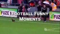 Funny Soccer Fails Bonus Top 10 Own Goals Sports Bloopers, Soccer Bloopers, Funny Socc