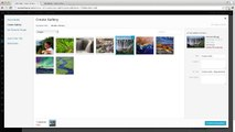 Photo Galleries settings wordpress
