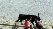 course de taureaux à AiguesMortes