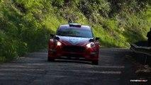 51° Rally del Friuli Venezia Giulia 2015 Crash & Show