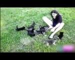 Amusant de Cat. funny cats