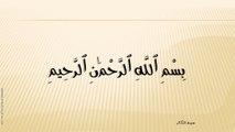 102-سُورة التَّکَاثُر-At-Takaathur-عبد الباسط عبد الصمد - Abdel Bassit Abdel Samad;