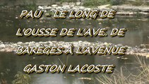 LES PROMENADES DE MICHOU W-D.D. - 27 OCTOBRE 2015 - PAU - LE LONG DE L'OUSSE DE L'AVENUE DE BARÈGES À  L'AVENUE  GASTON LACOSTE.