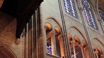 Notre-Dame de Paris, une visite insolite avec Ganesh dans CEST (presque) PAS SORCIER
