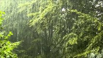 Rain on a tent, relaxing nature sound - video dailymotion