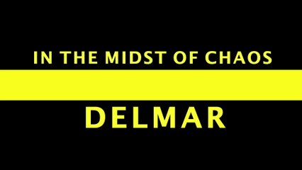 In The Midst Of Chaos / Les Delmar