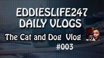 EddiesLife247 Vlogs: The Cat and Dog Vlog! - Vlog 002