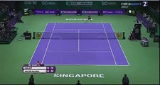 Simona Halep vs Agnieszka Radwanska WTA Finals 2015 - Amazing point