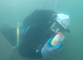 Diving in a Sinkhole at Queensland's Rainbow Beach