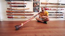 Jesse Lethbridge Didge Key of D (#2544) at Didgeridoo Breath