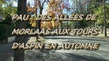 LES PROMENADES DE MICHOU W-D.D. - 30 OCTOBRE 2015 - DES ALLÉES DE MORLAAS AUX TOURS D'ASPIN EN AUTOMNE.
