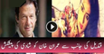 Qandeel Baloch's Marriage Proposal to Imran Khan