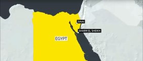 Russian Plane Crash Live Video: 220 People Onboard Crashes In Sinai, Egypt