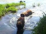 Atlas, sa maman et sa soeur dans l'eau