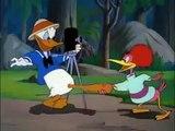 Donald Duck Clown of the Jungle Episode