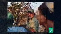 Lion Attacks Safari Hunter   Animal Attacks And Loves when animals attack