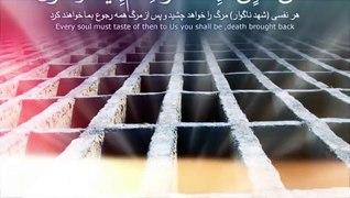 "Maulana Tariq Jameel Emotional Tilawat OªU""O§UˆOª U…"