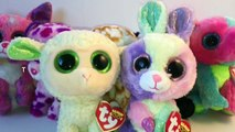 Beanie Boo Collection Update New Ty Beanie Boos